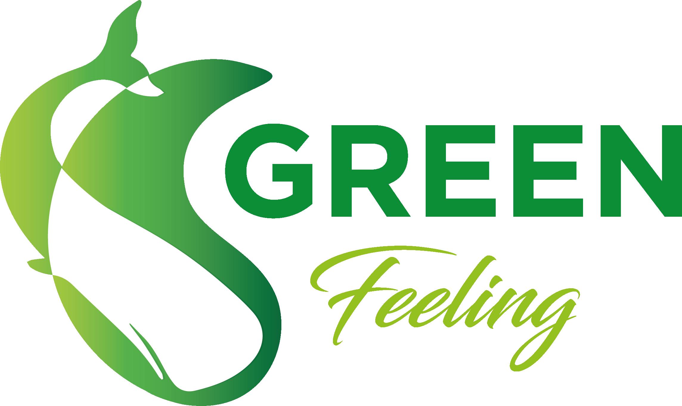 Green Feeling - Latina